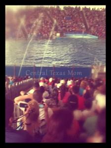Review Sea World San Antonio Texas amusement park aquarium