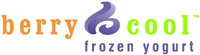Berry Cool Whitestone frozen yogurt in Cedar Park Austin Texas Review