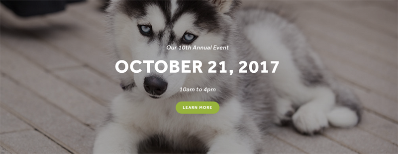 10th Annual DogtoberFest Austin at The Domain 10/21/17